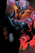 Batman and Robin Cover