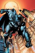 Batman The Dark Knight Cover